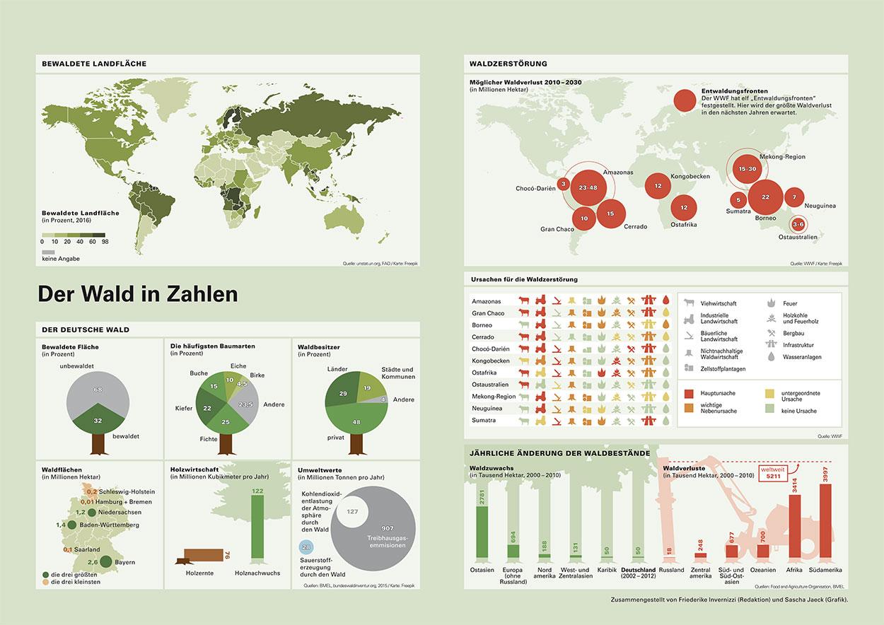 001-infografik-wald-sascha-jaeck